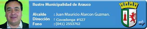 Municipio Arauco